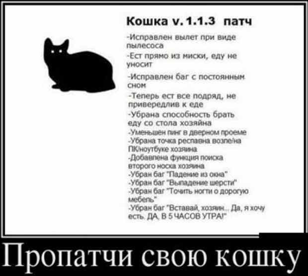 http://www.argolis-yacht.ru/Articles/pictures_to_smile/patch_cat.jpg